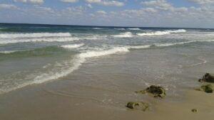 The-Ocean