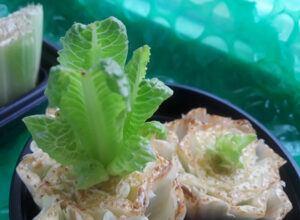 Grow-a-Windowsill-Garden-From-Your-Scraps-Romaine-Lettuce